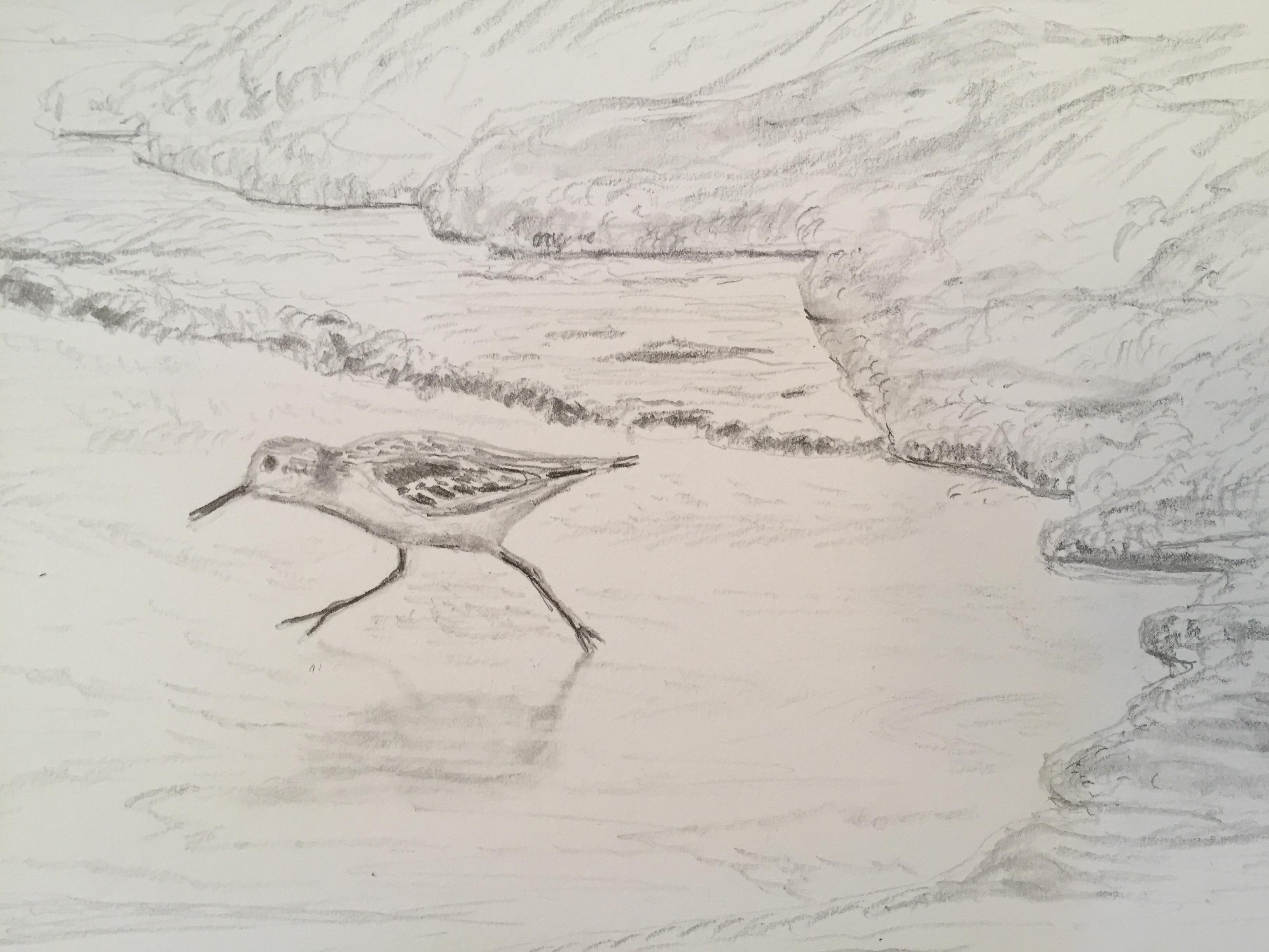 Drawing Impasto